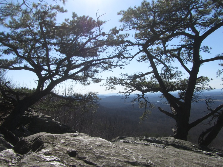 Bear's Den on the Appalachian Trail, Virginia