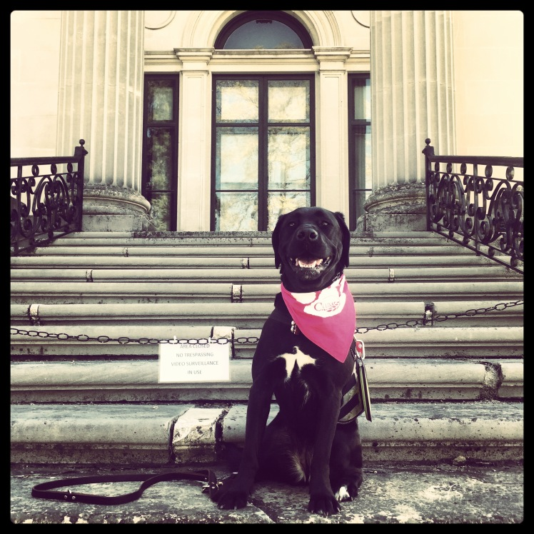Onyx at the Vanderbilt Mansion in Hyde Park, New York