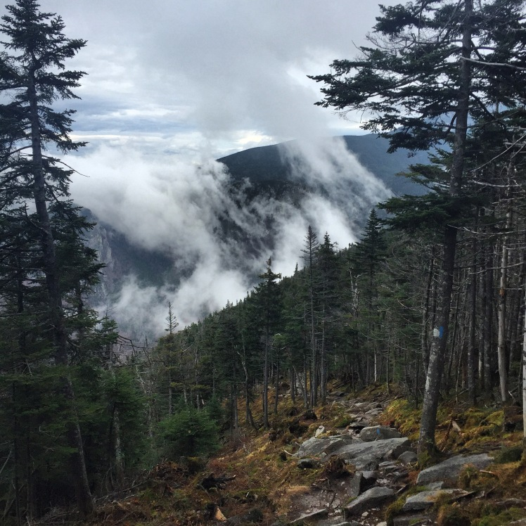 Kinsman Ridge Trail, Cannon Mountain, New Hampshire