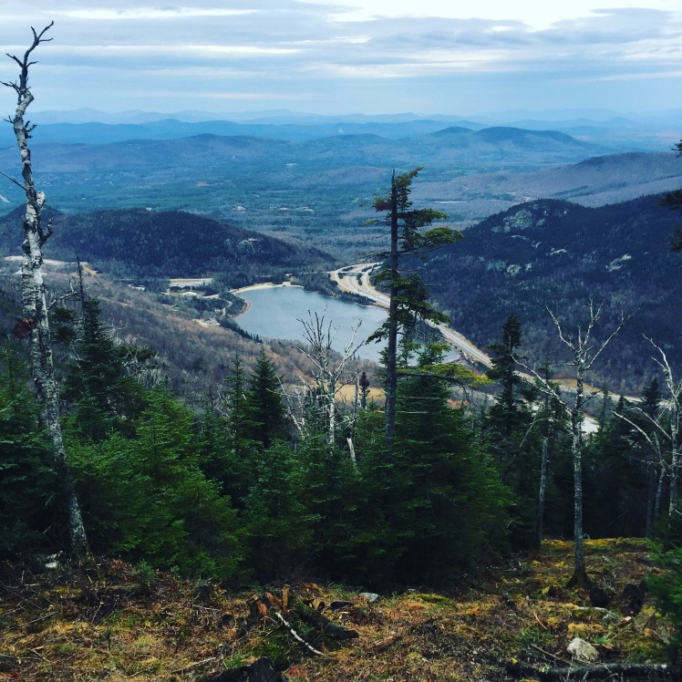 Kinsman Ridge Trail, Cannon Mountain, Franconia Notch State Park
